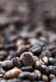 Chicchi di caffè - Bokeh Immagine Stock Libera da Diritti