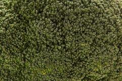 Un'immagine del primo piano di un cavolo verde Fotografie Stock Libere da Diritti
