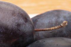 Un'immagine grande della frutta della prugna profondità del campo limitata Fotografia Stock Libera da Diritti