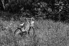 Un'immagine monocromatica di una bici nel parco Immagini Stock