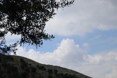 Un'immagine per un chiaro cielo immagini stock libere da diritti