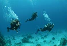 Un'immersione con bombole dei tre amici insieme fotografia stock