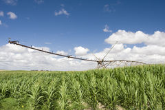 Un impianto di irrigazione moderno concentrare del perno Immagini Stock