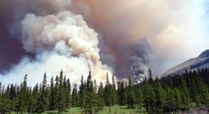 Un incendio forestal feroz que se arde en el parque de banff fotografía de archivo