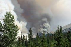 Un incendio forestal que rabia en las montañas rocosas imagenes de archivo