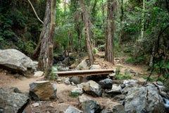 Un incrocio attraverso un piccolo fiume su una cascata di Caledonia che fa un'escursione viaggio, vicino a Platres, il Cipro Fotografie Stock Libere da Diritti