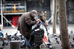 Un indigente rimprovera i piccioni fotografie stock