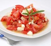 Un'insalata fresca dei pomodori Fotografie Stock Libere da Diritti