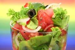 Un'insalata verde oliva fresca Fotografia Stock Libera da Diritti