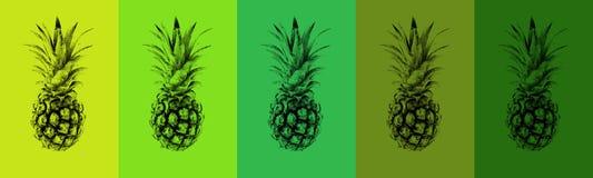 Un insieme degli ananas colorati Immagine Stock Libera da Diritti