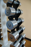 Un insieme dei dumbbells di peso differente Fotografia Stock Libera da Diritti