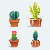 Un insieme del cactus quattro in vaso di fiore immagine stock