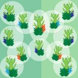 Un insieme del cactus verde nei palloni trasparenti bianchi royalty illustrazione gratis