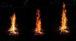 Un insieme della foto tre di un primo piano arancio del falò isolato su un fondo nero in una foresta di notte Fotografie Stock