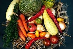 Un insieme della frutta e delle verdure fresche Fotografie Stock