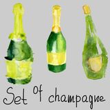 Un insieme delle bottiglie verdi di champagne Acquerello di vino spumante su fondo grigio Immagine Stock Libera da Diritti