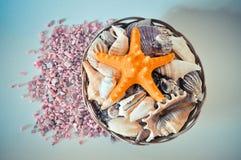 Un insieme delle conchiglie e delle stelle marine differenti in un canestro sulle piccole pietre rosa Immagine Stock Libera da Diritti