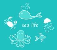 Un insieme delle creature del mare Fotografia Stock