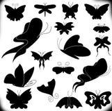 Un insieme delle farfalle Fotografia Stock
