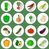 Un insieme delle icone delle verdure differenti in un cerchio bianco con un'ombra su un fondo verde royalty illustrazione gratis