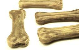 Un insieme delle ossa di cane Immagini Stock Libere da Diritti