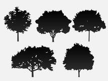 Un insieme di 5 alberi di vettore nel nero su un fondo grigio royalty illustrazione gratis