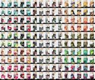 Un insieme di 150 modelli dell'aletta di filatoio di affari Fotografia Stock