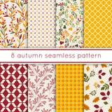 Un insieme di 8 modelli senza cuciture svegli di Autumn Beauty con le foglie, bacche, pois Immagine Stock Libera da Diritti