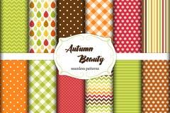 Un insieme di 12 modelli senza cuciture svegli di Autumn Beauty con le foglie, pois bande, gallone e plaid Immagine Stock Libera da Diritti