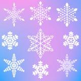 Un insieme di nove fiocchi di neve eleganti differenti Immagini Stock Libere da Diritti