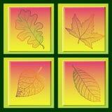 Un insieme di quattro carte con le foglie di autunno colorate. Royalty Illustrazione gratis
