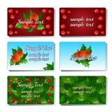 Un insieme di sei carte con la bacca e la frutta dell'agrifoglio royalty illustrazione gratis