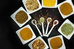 Un insieme di 8 spezie e condimenti sul nero Immagine Stock