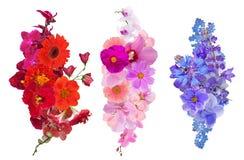 Un insieme di tre decorazioni del fiore isolate su bianco Fotografia Stock Libera da Diritti