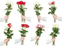 Un insieme di tre e cinque mazzi rosa del fiore a disposizione Immagini Stock Libere da Diritti