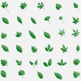 Un insieme di verde di 35 icone dei leavs isolate su fondo Piano moderno Immagini Stock Libere da Diritti