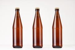 Un insieme tre di derisione marrone delle bottiglie di birra 500ml di NRW su Modello per la pubblicità, progettazione, identità m Immagine Stock Libera da Diritti