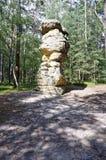 Un'installazione della roccia veduta nel centro di una foresta Fotografia Stock Libera da Diritti