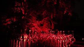 Un'installazione leggera interattiva all'aperto ha chiamato Light Sowers da Maotik ha visualizzato in Vojanovy sady durante il fe archivi video