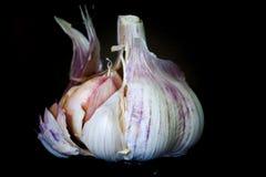 Un'intera metà dell'aglio aperta Fotografia Stock