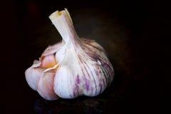 Un intero aglio bianco Fotografie Stock Libere da Diritti