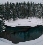 Un invierno en Parque Nacional Glacier Foto de archivo