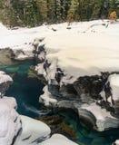 Un invierno en Parque Nacional Glacier Imágenes de archivo libres de regalías