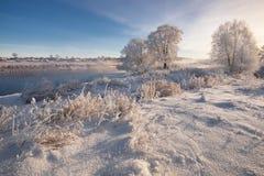 Un invierno ruso real Nieve y escarcha blanca de Frosty Winter Landscape With Dazzling de la mañana, río y cielo azul saturado Fotografía de archivo libre de regalías