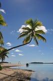 Un'isola del piede, cuoco Islands Fotografie Stock Libere da Diritti