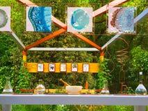 Un jardín de la demostración del artesano en Chelsea Flower Show Foto de archivo libre de regalías