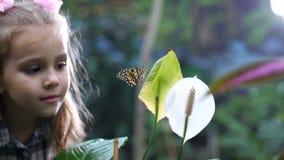 Un jardín hermoso, una mariposa se sienta en una flor, una niña sube y huele el color 4K MES lento metrajes