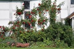 Un jardín inglés del país imagen de archivo