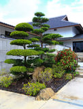 Un jardín japonés tradicional famoso Fotos de archivo
