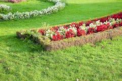 Un jardin finement manicured montre ses couleurs Image libre de droits